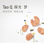 Tao Q 探戈梦